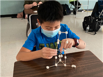 STEM-Inspired Marshmallow Structures   thumbnail179649